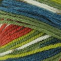 Plymouth Yarn Encore Colorspun - Blue, Orange, Green (8197)