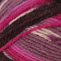 Plymouth Yarn Encore Colorspun - Violet Mix (8198)
