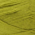 Plymouth Yarn Encore - Sour Apple (0150)