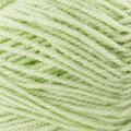 Plymouth Yarn Encore - Honeydew Melon (0450)