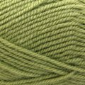 Plymouth Yarn Encore - Green Gremlin (0451)