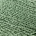Plymouth Yarn Encore - Sage (1232)