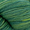 Plymouth Yarn Galway Worsted Collage - Evergreen (312)