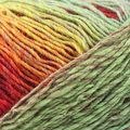 Plymouth Yarn Gina - Red, Spring Green, Yellow, Orange (05)