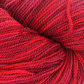 Plymouth Yarn Happy Feet 100 - Red Mix (0004)