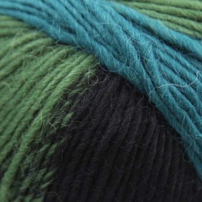 Plymouth Yarn Pasea Color 100 New