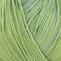 Plymouth Yarn Pendenza - Lime-Green (03)