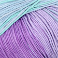 Plymouth Yarn Pendenza - Purple-Teal (05)