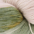 Plymouth Yarn Reserve Fingering - Apple Orchard (206)