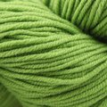 Plymouth Yarn Select DK Merino Superwash - Peapod (1123)