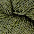 Plymouth Yarn Select Worsted Merino Superwash - Green (81)