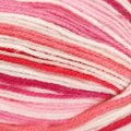 Plymouth Yarn Toybox Collection Candy - Hot Pink (0436)