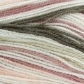 Plymouth Yarn Toybox Collection Candy - Pink Taupe (0564)