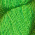 Queensland Collection Rustic Merino Sport - Shamrock (17)