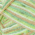 Regia Cotton Tutti Frutti Color - Kiwi (2418)