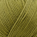 Sesia Nordica Discontinued Colors - Olive (0187)