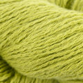 Shibui Knits Fern - Apple (0103)