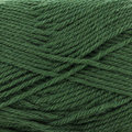 Sirdar Country Classic Worsted - Pine (671)