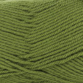 Sirdar Country Classic Worsted - Fern (672)