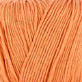 Sirdar Snuggly Baby Bamboo DK Discontinued Colors - Carrot (084)