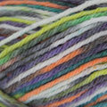 Sirdar Snuggly Baby Crofter Fair Isle Effect DK Discontinued Colors - Brooke (greens, Blue, Purple, Orange, Lime)-closeout (183)
