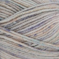 Sirdar Snuggly Rascal DK - Little Treasure (455)