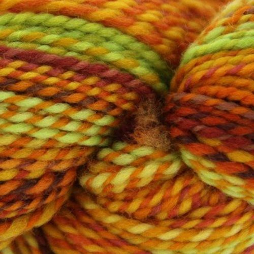 Spincycle Yarns Dyed in the Wool - End Of Summer (ENDOFSUMME)