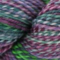 Spincycle Yarns Dyed in the Wool - Ruination (RUINATION)