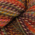 Spincycle Yarns Dyed in the Wool - Rusted Rainbow (RUSTEDRAIN)