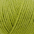 Stacy Charles Fine Yarns S Line Eden - Lime (1820)