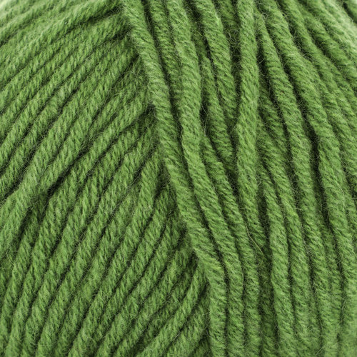 String Classica Discontinued Colors - Leafy Green (201406)
