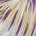 Sublime Baby Cashmere Merino Silk DK Prints - Carousel (571)