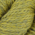 Sugar Bush Yarns Dawson - Wild Willow (1307)