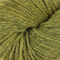 Swans Island All American Collection Worsted - Kelp (410)