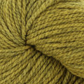 Swans Island All American Collection Worsted - Lichen (412)
