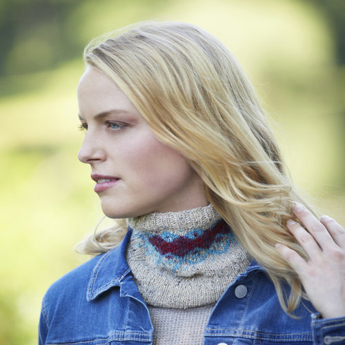 Tahki Yarns Bray Cowl Kit - Model (01)