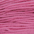 Tahki Yarns Cotton Classic Discontinued Colors - Peony (3445)