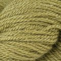 The Fibre Co. Canopy Fingering Discontinued Colors - Chiclet Tree (CHICLETTRE)