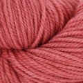 The Fibre Co. Canopy Worsted 100g - Guava (GUAVA)
