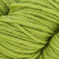 The Fibre Co. Canopy Worsted 100g - Parakeet (PARAKEET)