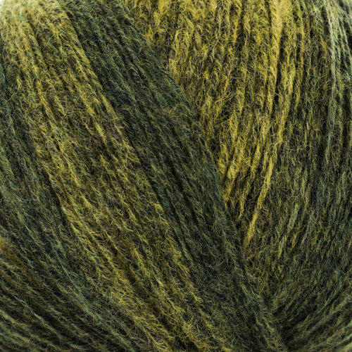 Trendsetter Yarns Basis - Black Saffron/Moss (215611)