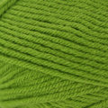 Universal Yarn Classic Worsted - Granny Smith (0629)