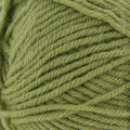 Universal Yarn Classic Worsted - Linden Green (7087)