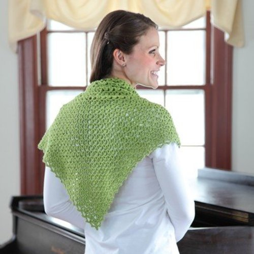 Valley Yarns 363 Pincushion Moss Crocheted Shawl -  ()