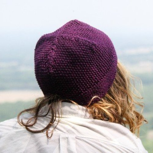 Valley Yarns 738 Choose Your Own Adventure Hat (Free) -  ()