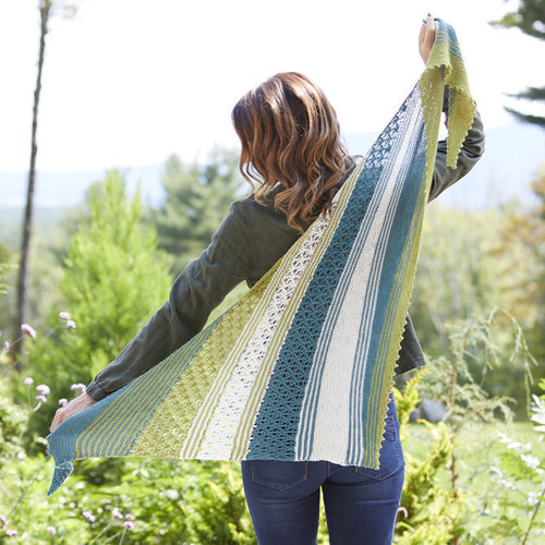 Valley Yarns 828 Lace Colorwork Shawl Kit - Model (01)