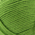 Valley Yarns Haydenville Discontinued Colors - Lime (26)