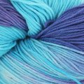 Valley Yarns Huntington Hand Dyed by the Kangaroo Dyer - Puddles (PUDDLES)