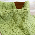 Valley Yarns WEBS Emerging Designer #04 Sproutlet Blanket Kit - Spring Leaf (10)