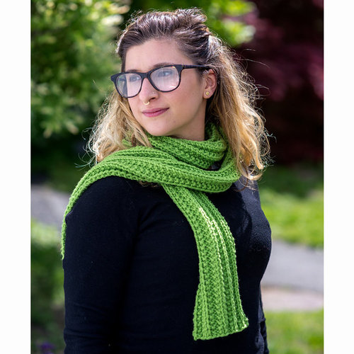WEBS Learn to Knit Kit - Lime (01)